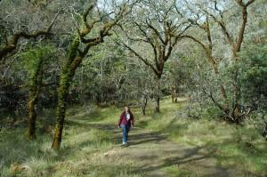 Hiking At Bothe