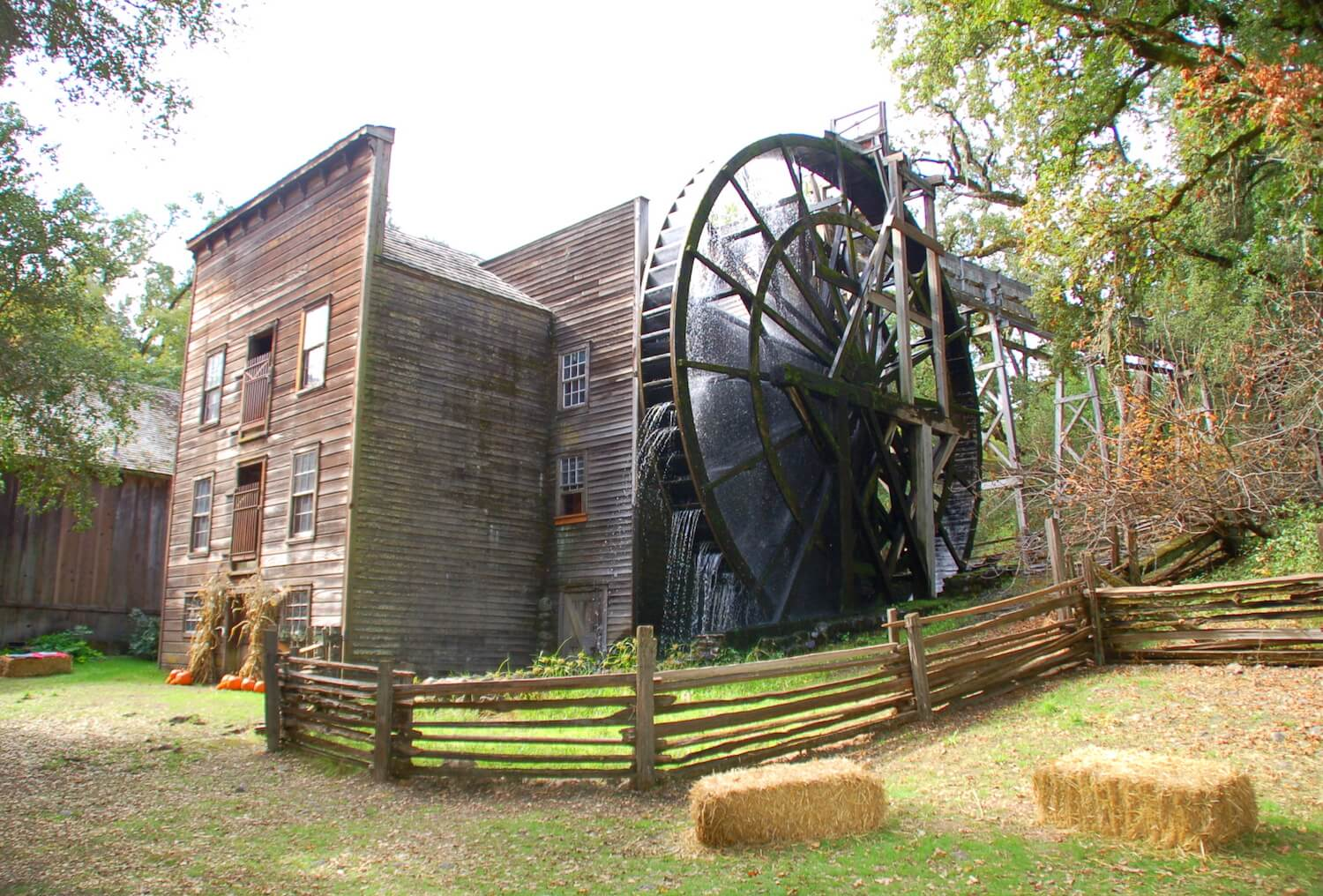 copy-of-mill