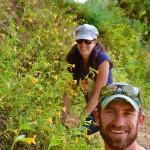 Volunteers and Wildflowers at Moore Creek Park