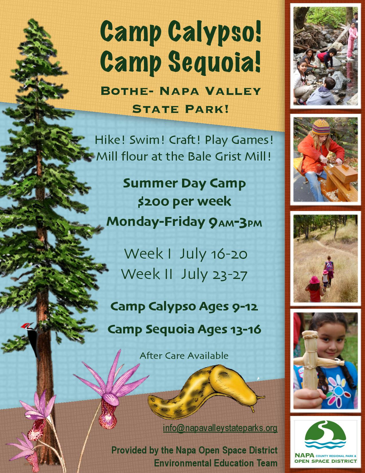 Summer Camp at Bothe Napa Valley State Park | Napa Outdoors